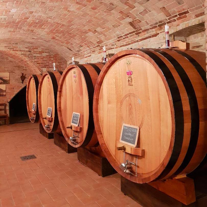 Corso di Avvicinamento al Vino di Valentina Casetta